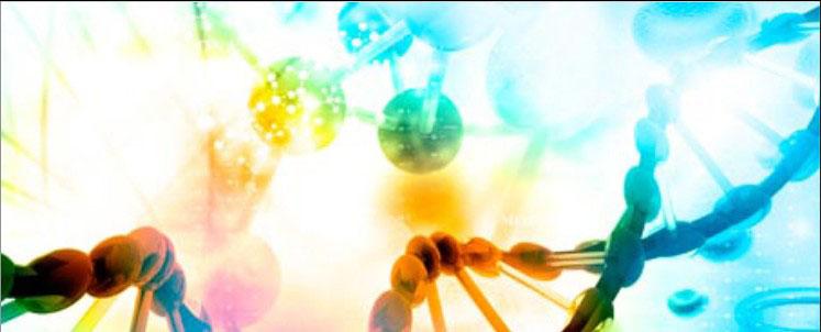 Programa Multicêntrico de Pós-Graduação em Bioquímica e Biologia Molecular (cursos de mestrado e doutorado)